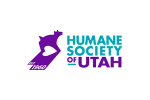 Launch Leads at the Humane Society: Quarterly Service Project by Nancy Sutton